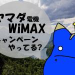 ヤマダ電機WiMAXの月額料金とキャンペーンを確認!