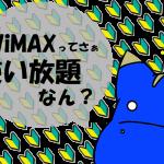 厳密に言うとWiMAXのギガ放題は使い放題ではない